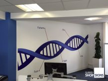 dna wall graphics